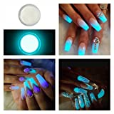 Glow In the Dark Fluorescent Acrylic Powder Pre Mix Nail Extension Art Design Fake Tips Builder Baby...