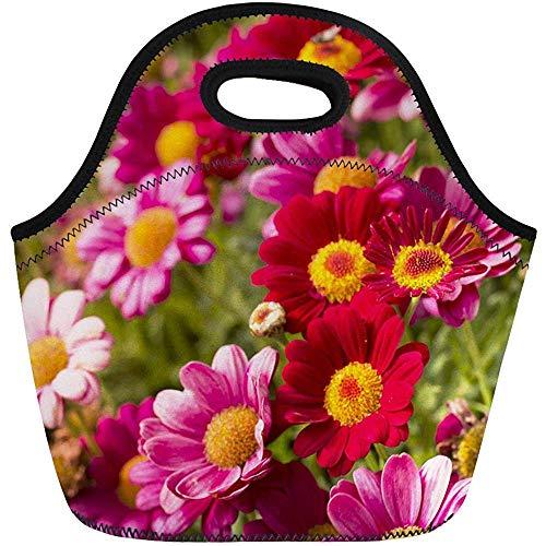 Neopren Lunchtasche,Rosa Schöne Gänseblümchen-Blumen-Frühlings-Blühende Fall-Floristen-Obstgarten-Wiederverwendbare Picknicktaschen,Tragbare Tragetasche,Reise/Büro-Handtasche