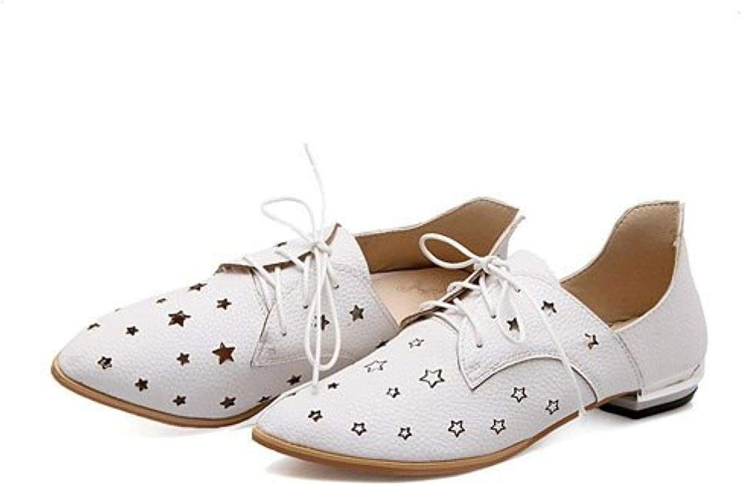 Fay Waters Women's Star Perforated Pointed Toe Flats Lace Up Breathable Hollow Cut Fashion Oxford shoes