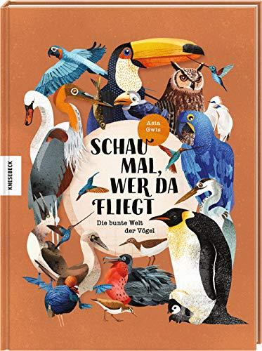 Schau mal, wer da fliegt: Die bunte Welt der Vögel