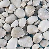 Mdurian guijarros Grava Natural Pulida Decorativa Piedras de Roca de río para Maceta jardín Boda casa florero Acuario 20-40mm 1KG Blanco