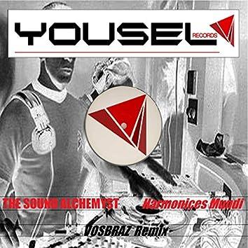 Harmonices Mundi (Vosbraz Remix)