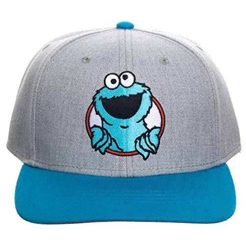 Sesame Street Cookie Monster Snapback Hat