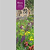 Official Royal Horticultural Society Royal Horticultural Society, RHS - Chelsea Football Club Flower Show 2022 Calendar - Month To View Slim Wall ... Chelsea Flower Show Slim Calendar 2022)