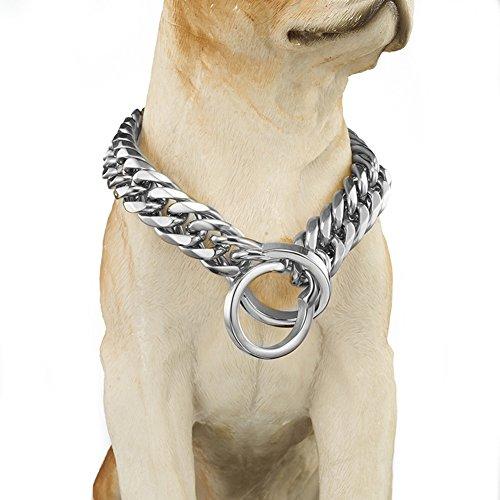 Abaxaca Extra Large Dog Collar Heavy Duty 18K Gold...