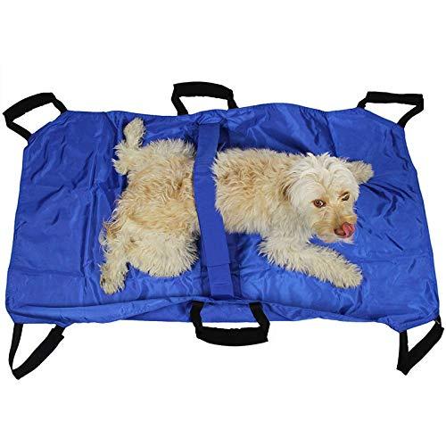 BZZBZZ 10 Stück Hundetransfergurt Notfall-Tiertransporttasche mit 6 Griffen und...