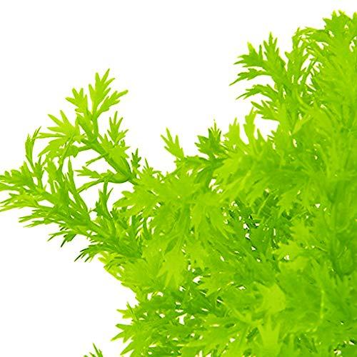 Rekkles Künstliche Plastikblumen-Blätter Zweig Naturgetreue Petersilie Blumenhauptdekoration Foto Props - 6