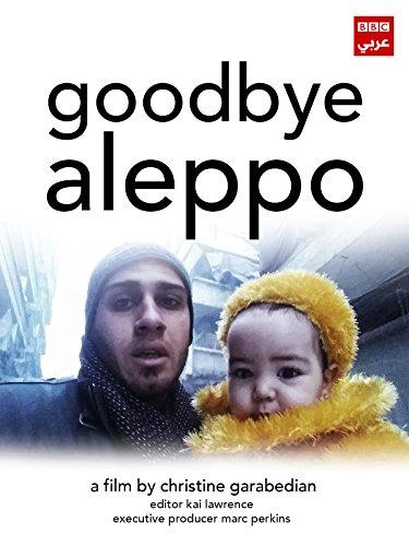 Goodbye Aleppo [OV]