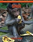 Singe: Images étonnantes et faits amusants pour les enfants