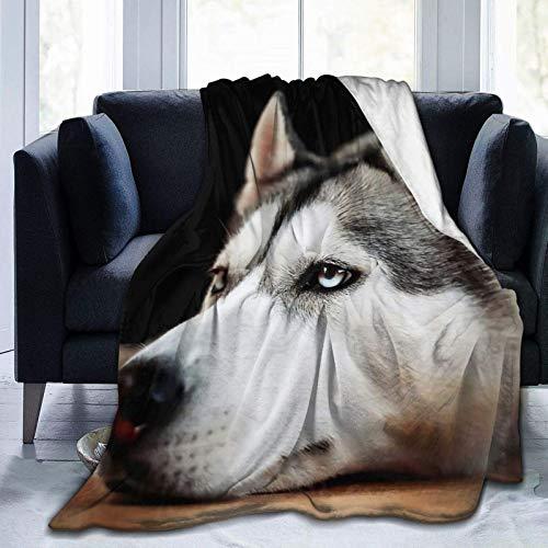 Lazy Husky Dog Cozy Fleece Throw Manta Hecha de Felpa Franela Throw Blanket Hogar Cama Sofá Decoraciones