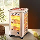 DYCLE 2000W Patio heaters,Birdcage electric heater,Quartz tube heating 2 temperatures Outdoor garden heater can barbecue