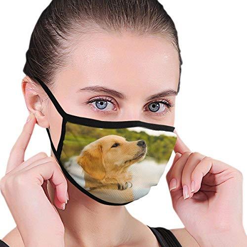 Gesichtsabdeckungen Golden Retriever Puppy Dogs Unisex-Schutzabdeckungen für Erwachsene gegen Wind Anti Dust