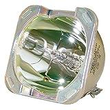UHP 350–264W 1.3e21.9PhilipsケージアセンブリオリジナルOEM Phoenixプロジェクタ電球