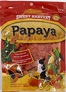Sweet Harvest Papaya Treat, 6.5 Oz Bag - Real Fruit for Birds and Small Animals - Rabbits, Hamsters, Guinea Pigs, Mice, Ge...