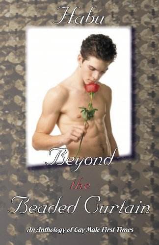Beyond the Beaded Curtain: An Anthology of Gay First Times
