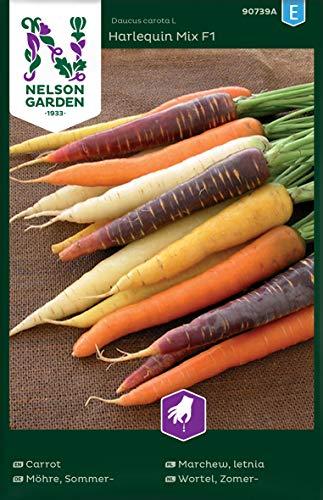 Möhren Samen Mix Harlequin F1 - Nelson Garden Gemüse Saatgut - Karotten Samen (300 Stück) (Einzelpackung)