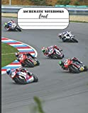 Aschematic Notebooks : Lined Notebook: 100 Pages (8,5x11), Kawasaki Z900, Suzuki GSX-R 600, KTM, MotoAmerica, Motorcycles, 2021 Honda Motorcycles, ... Notebook, A4 Lined Pages Notebook, Notebo