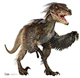 Advanced Graphics Velociraptor Life Size Cardboard Cutout Standup - Natural History Museum