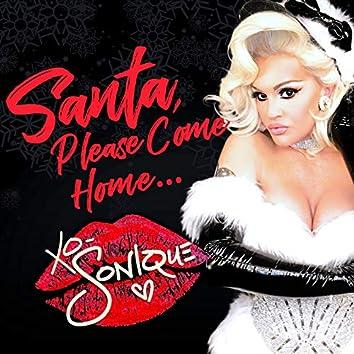 Santa Please Come Home