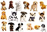 17PCS Dogs Wall Sticker 3D Pet Stickers for Kids Wall Decals Living Room Baby Rooms Bedroom Toilet House Wall DIY Decoration