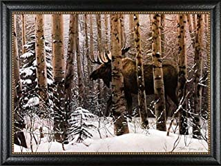 Picture Peddler A Walk in The Woods by Stephen Lyman Moose Quality Framed Art, Finished Size: 41.5x29.25, Image Size: 36x23.75