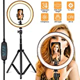 Villsure LED Ring Light, 10' Selfie Ring Light with Adjustable Tripod Stand and Phone Holder, Dimmable Led Camera Ringlight for Live Stream/Make Up/YouTube, Compatible with iPhone/Android