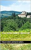 29 Day Custom Camino de Santiago Trip: St-Jean-Pied-de-Port to Santiago (English Edition)