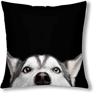 InterestPrint Funny Close Up Head of Siberian Husky Dog with Blue Eyes Cushion Case Pillow Cover with 18x18 Inch, Zippered Throw Pillowcase for Bedroom Sofa Decor