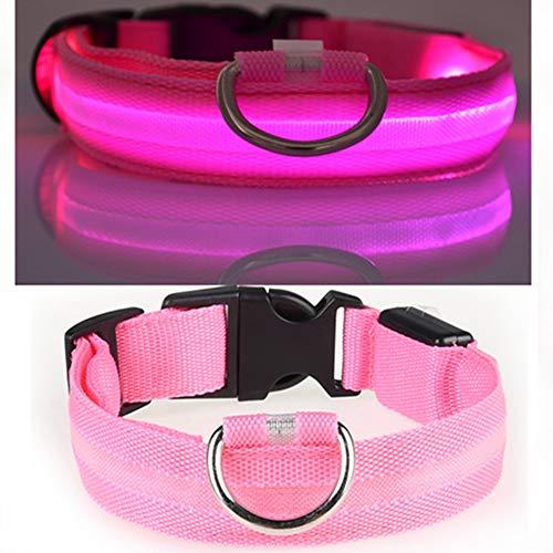 Egurs LED hondenhalsband USB oplaadbaar Super Bright Safety Pet Collar Verhoogde zichtbaarheid en veiligheid blauw