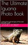 The Ultimate Iguana Photo Book: Looking Through the Eyes of This Cold-Blooded Lizard (English Edition)
