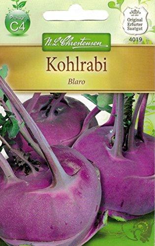 Chrestensen Kohlrabi 'Blaro'