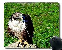 パーソナライズされたマウスパッド、Skying Bird Of Prey Officeマウスパッド