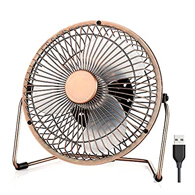 EasyAcc USB Desk Fan 5 Inch Desktop Silent Fan Air Circulator 2 Speeds 360° Rotation Brushless Motor Noiseless for Home and Office Laptop Notebook PC Desk Table Fan - Metal Brone
