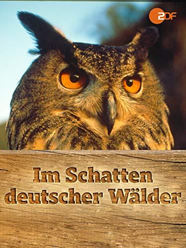 Im Schatten deutscher Wälder