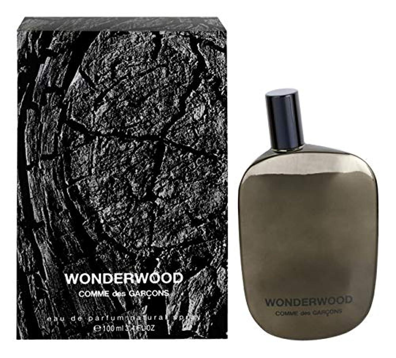 結核王族ポルティコComme des Garcons Wonderwood Eau de Parfum 3.4 Oz/100 ml New in Box [並行輸入品]