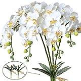 FagusHome Flores de Phalaenopsis de Seda Artificial de 31'4 Piezas con 2 Paquetes de Hojas Flores de orquídeas Artificiales Tallo Plantas en Flores Blancas Falsas para decoración (4)