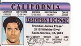 Brendan James Fraser - Licencia de conducir (identificación falsa)