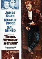Rebel Without a Cause ポスター 映画 L 11x17 ジェームズ・ディーン ナタリー ウッド サル ミネオ ジム・バックス Unframed 529644