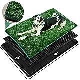 Indoor Grass Dog Potty