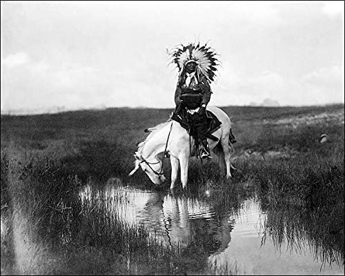 Edward S. Curtis Cheyenne Indian on Outstanding Horse Virginia Beach Mall 8x10 Halide Silver Pho