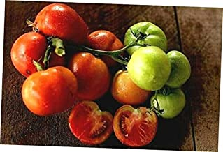 HNM 10 Seeds Oregon Spring Tomato Seeds - LY1010