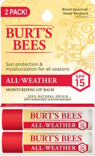 Burts Bees 100% Natural Origin Moisturizing Lip Balm