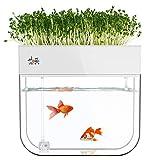 Huamuyu Hydroponic Garden Aquaponic Fish Tank...
