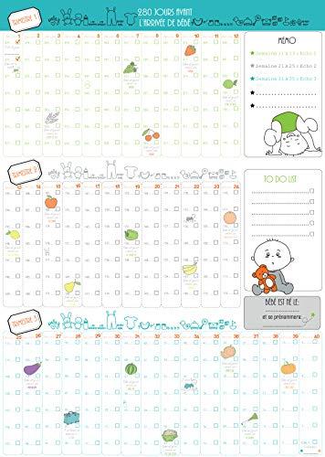 Calendario póster, 9 meses, libro de seguimiento de embarazo día tras día (BLEU)