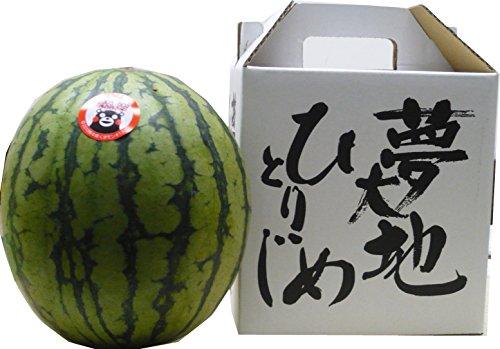 熊本県産 ひとりじめ小玉すいか2L1玉化粧箱入り 東洋フルーツ(有)