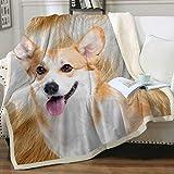 Sleepwish Corgi Blanket Throw Puppy Dog Fleece Blanket Dog Blankets for Kids Boys Girls Adults Plush Soft Blanket Warm Cozy Cute Animals Bed Blanket Corgi for Corgi Lovers (50' X 60')
