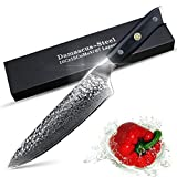 Juego Cuchillo de cocina Damasco Cuchillos Chef Cuchillo Cuchillo de cocina japonesa Damasco VG10 67 capas de acero inoxidable cuchillos ultra agudo G10 cuchillos