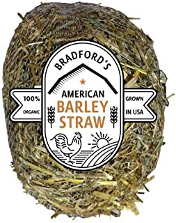 Bradford Homes American Barley Straw Algae Treatment up to 1000 Gallon Bale (4 oz) for Clear Ponds No Chemicals, Environmentally Safe (4 oz Treats up to 1000 Gallons)