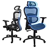 Ergousit Ergonomic Office Chair - Breathable Mesh Computer Chair with 3D Lumbar Support and Adjustable Headrest Flexible Armrests, Home Office Desk Chairs, Rolling Swivel Office Chair (Dark Black)