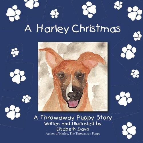 A Harley Christmas (English Edition)